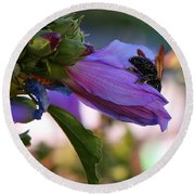 Collecting Pollen Round Beach Towel by Jennifer Muller