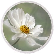Cosmos Flower In White Round Beach Towel