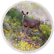 Deer In Wildflowers Round Beach Towel by Athena Mckinzie
