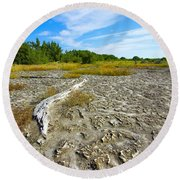 Everglades Coastal Prairies Round Beach Towel