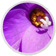 Round Beach Towel featuring the digital art Flower by Gandz Photography