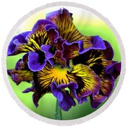 Frilly Pansy Round Beach Towel