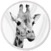 Giraffe On White Background  Round Beach Towel