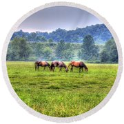 Round Beach Towel featuring the photograph Horses In A Field by Jonny D