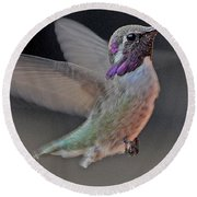 Hummingbird In Flight Round Beach Towel