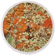 Round Beach Towel featuring the photograph Lichen Abstract by Mae Wertz