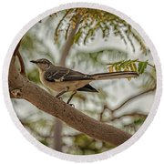 Mockingbird Round Beach Towel by Robert Bales