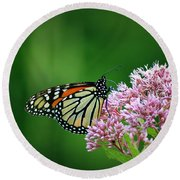 Monarch In Light  Round Beach Towel