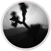 New Photographic Art Print For Sale Joshua Tree At Sunset Black And White Round Beach Towel