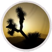 New Photographic Art Print For Sale Joshua Tree At Sunset Round Beach Towel