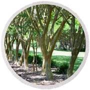 Round Beach Towel featuring the painting Norfolk Botanical Garden 6 by Lanjee Chee