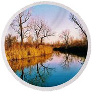 Round Beach Towel featuring the photograph November by Daniel Thompson