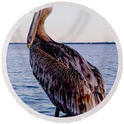 Pelican At Port Round Beach Towel