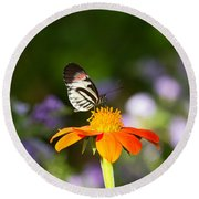 Piano Key Butterfly Round Beach Towel by Kim Hojnacki