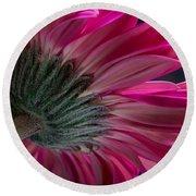 Pink Flower Round Beach Towel by Edgar Laureano