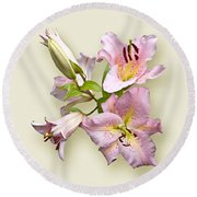Pink Lilies On Cream Round Beach Towel