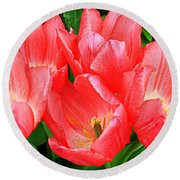 Round Beach Towel featuring the photograph Tulips Radiant In Pink by Dora Sofia Caputo Photographic Art and Design