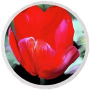 Round Beach Towel featuring the photograph Red Hot by Patricia Griffin Brett