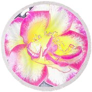 Rose 3 Round Beach Towel by Pamela Cooper