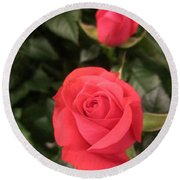 Roses In Red Round Beach Towel