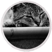 Round Beach Towel featuring the photograph Sleeping by Laura Melis