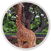 Stretching It Round Beach Towel by Michele Myers