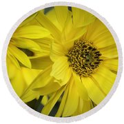 Sunflowers Round Beach Towel by Fran Gallogly