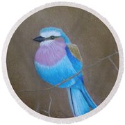 Violet-breasted Roller Bird Round Beach Towel