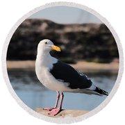 Western Gull At Moss Landing Inlet Round Beach Towel by Susan Wiedmann