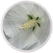 Round Beach Towel featuring the photograph White Hibiscus by Nadalyn Larsen