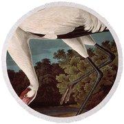 Whooping Crane Round Beach Towel by John James Audubon