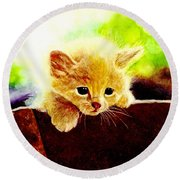 Yellow Kitten Round Beach Towel