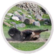 Round Beach Towel featuring the photograph Yellowstone Bison by Michael Chatt