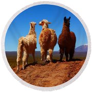 3 Amigos Round Beach Towel