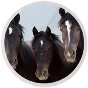 3 Amigos Wild Mustang Round Beach Towel