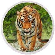 Amur Tiger Painting Round Beach Towel