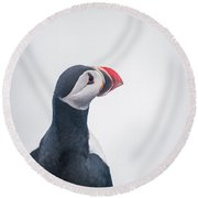 Atlantic Puffin Fratercula Arctica Round Beach Towel by Panoramic Images