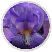 Round Beach Towel featuring the photograph Beauty Within by Bruce Bley