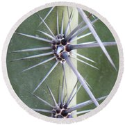 Round Beach Towel featuring the photograph Cactus Thorns by Deb Halloran