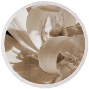 Double Late Tulip Named Angelique Round Beach Towel