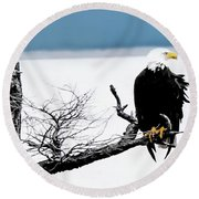 Elegance In The Morning Round Beach Towel