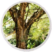Kingdom Of The Trees. Peradeniya Botanical Garden. Sri Lanka Round Beach Towel