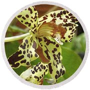 Leopard Orchids Round Beach Towel