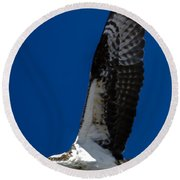 Osprey In Flight Round Beach Towel by Dale Powell