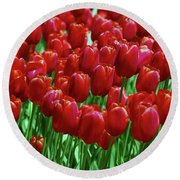 Round Beach Towel featuring the photograph Red Tulips  by Allen Beatty