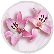Spray Of Pink Lilies Round Beach Towel by Jane McIlroy