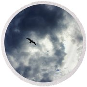 Round Beach Towel featuring the photograph Storm Flyer by Marilyn Wilson