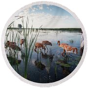 Whooping Crane Reintroduction, Direct Round Beach Towel