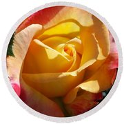 Yellow Rose Round Beach Towel by Catherine Gagne