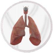 Human Lungs Round Beach Towel